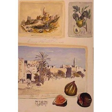 FIGS IN JERUSALEM Thumbnail